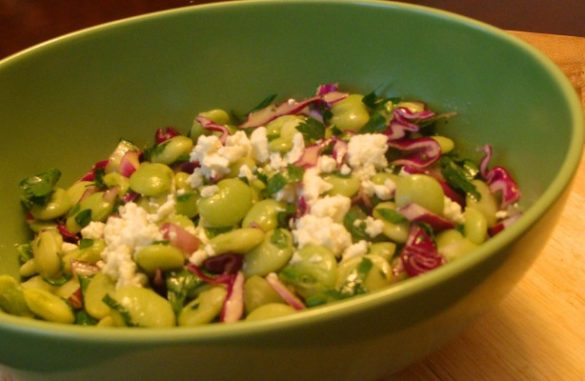 lima bean salad, winter salad