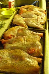 easy turkey recipe