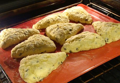 Scones Made With Self Rising Flour